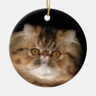 Brown tabby persian round ceramic decoration