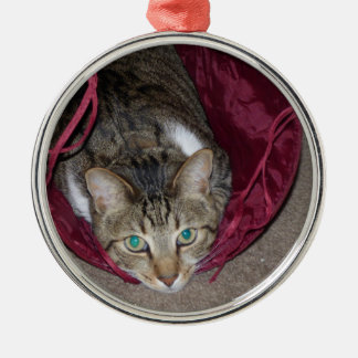 Brown Tabby Playing Ornament