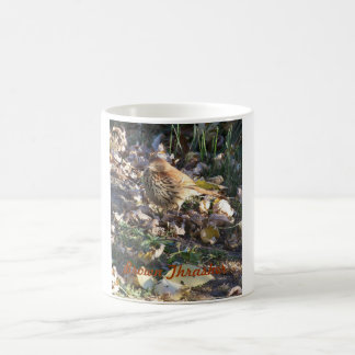 Brown Thrasher, Sunshine Basic White Mug