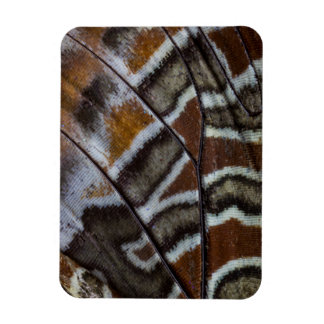 Brown tropical butterfly close-up rectangular photo magnet