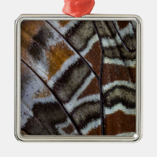 Brown tropical butterfly close-up Silver-Colored square decoration