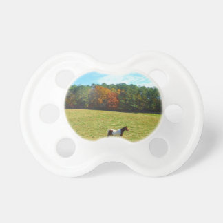 Brown & White horse,autumn trees,blue sky Pacifier