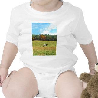 Brown & White horse,autumn trees,blue sky Baby Bodysuit