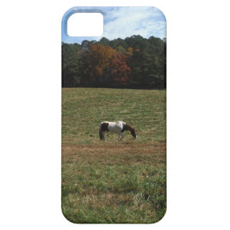 Brown & White horse iPhone 5 Case