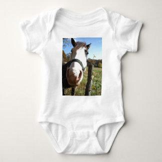 Brown & White horse w/ wildflower T-shirts