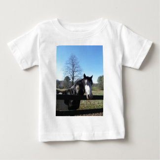 Brown &White, Painted Horse, bright blue sky Baby T-Shirt