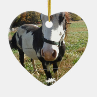 Brown &White, Painted Horse, Queen Ann Lace flower Ceramic Heart Decoration