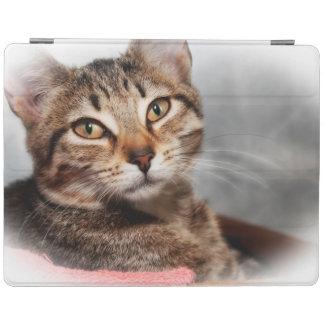BROWNN TABBY CAT IPAD CASE iPad COVER