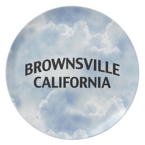 Brownsville California Party Plate