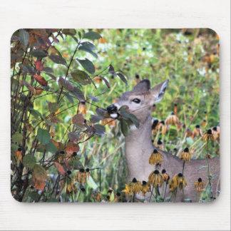 Browsing Deer After the Gardens Freeze Mouse Mat
