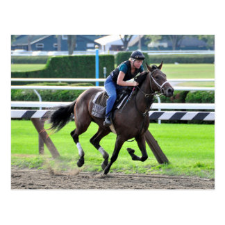 Bruce Brown Workouts at Saratoga Postcards