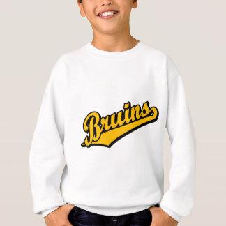Bruins in Orange Sweatshirt