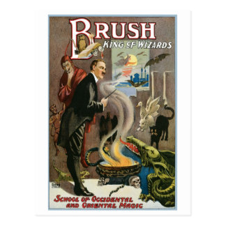 Brush ~ King of Wizards Vintage Magic Act Postcard