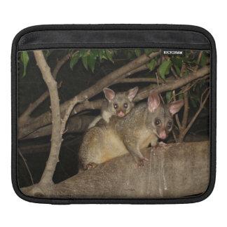 Brushtail Possums iPad Sleeve