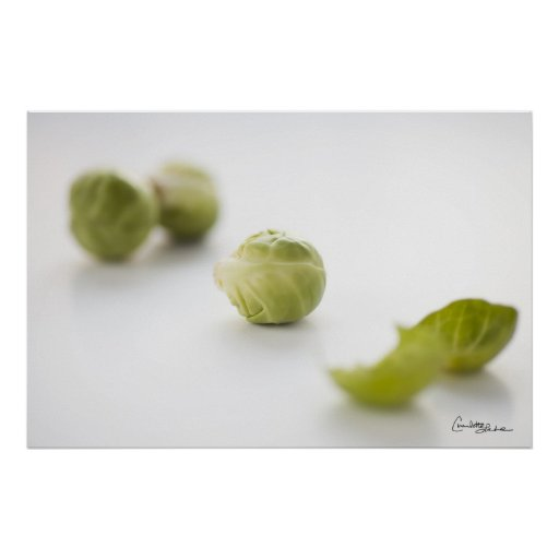 Brussel Sprout Prints