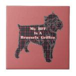 Brussells Griffon BFF