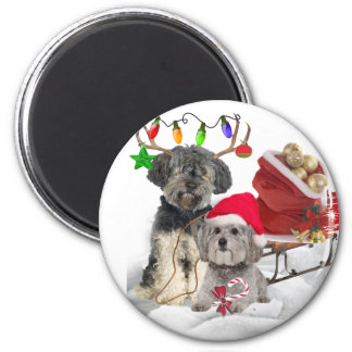 Brussels Griffon Christmas gifts 6 Cm Round Magnet