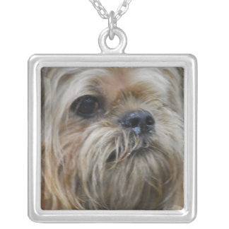 Brussels Griffon Puppy Personalized Necklace
