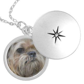 Brussels Griffon Puppy Jewelry