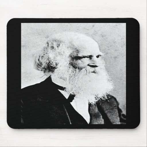 Bryant - William Cullen / American Poet Mouse Pad