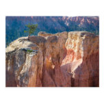 Bryce Canyon National Park Post Card