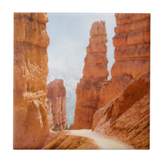 Bryce Canyon National Park Trail Tile