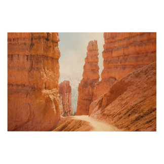 Bryce Canyon National Park Trail Wood Wall Decor