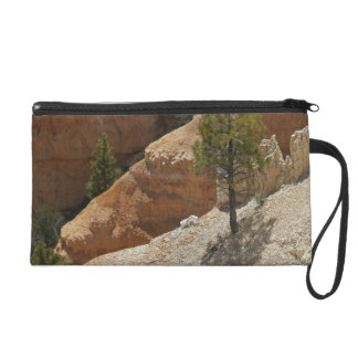 Bryce Canyon National Park, Utah 2 Wristlet Purses