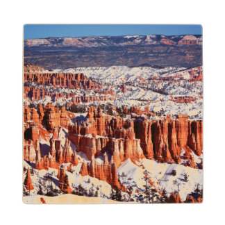 Bryce Canyon National Park Wood Coaster