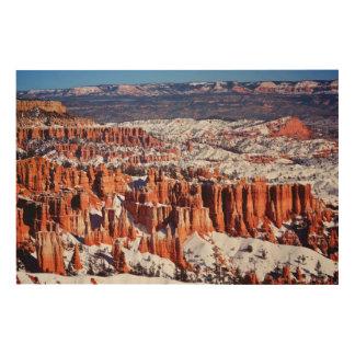 Bryce Canyon National Park Wood Wall Art