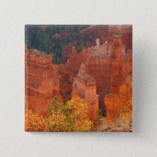 Bryce Canyon Utah 15 Cm Square Badge