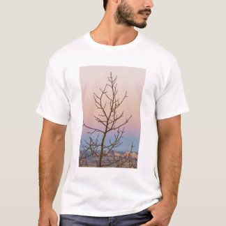 Bryce Canyon, Utah. Bare tree in front of sunset T-Shirt