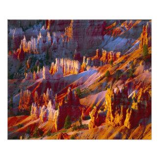 Bryce Canyon, Utah, USA 2 Photo Print