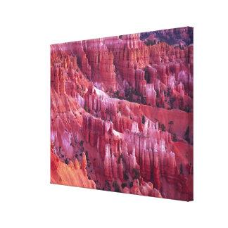 Bryce Canyon, Utah, USA Canvas Print