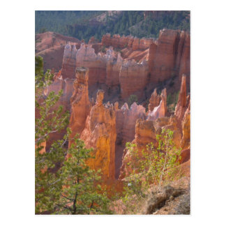 Bryce Postcard