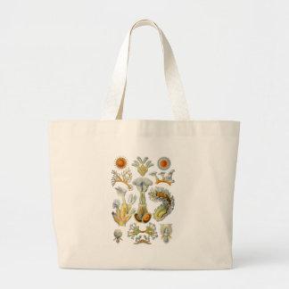 Bryozoa Bags