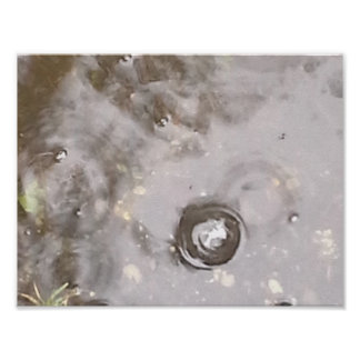 Bubble in the Puddle Poster