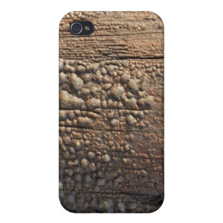Bubbled Wood Telphone Pole Texture iPhone 4 Case