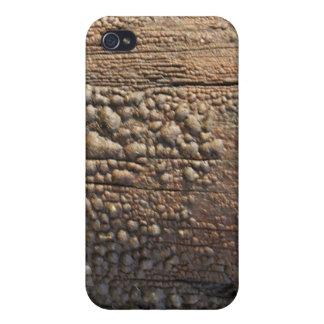 Bubbled Wood Telphone Pole Texture iPhone 4 Case