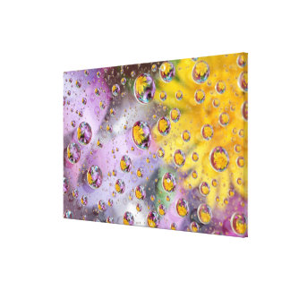 Bubbles abstract with flowers. Credit as: Nancy Canvas Print