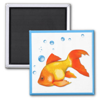 Bubbles the Goldfish Square Magnet