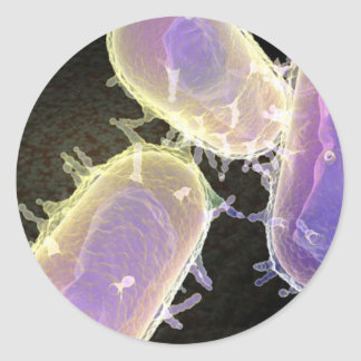 Bubonic Plague Classic Round Sticker