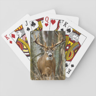 Buck Deer Playing Cards