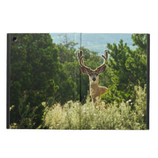 Buck Emerging From the Woods iPad Air Case
