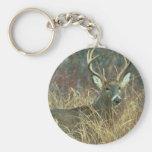 Buck in the Grass Key Chain