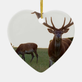 Buck Ornament