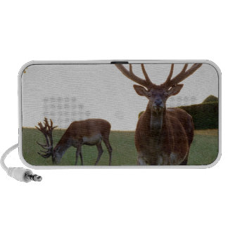 Buck Portable Speakers