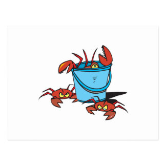 bucket of crabs postcard
