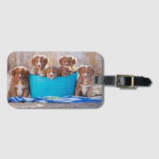 Bucket Of Puppies On The Beach Luggage Tag