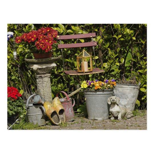 Buckets, shoes, and flowers, Zaanse Schans, Postcard